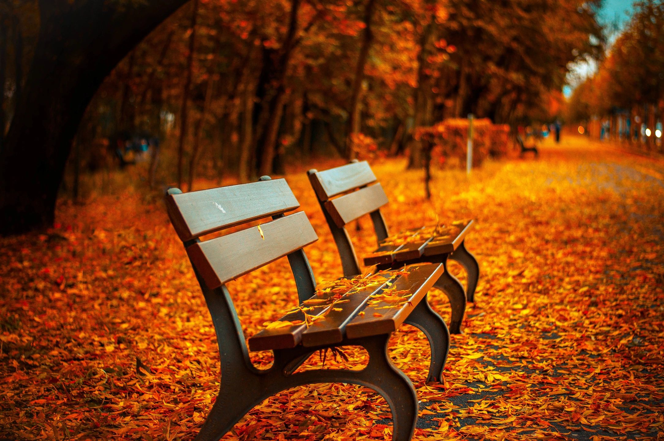 It's Almost Fall-Refocus On Your Goals And Finish Strong